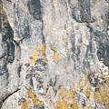 Abstract Texture Old Plaster by Jozef Jankola