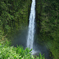 Akaka Falls by Peter French - Printscapes