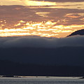 Alaskan Coast Sunset, View Towards Kosciusko Or Prince Of Wales  by David Halperin