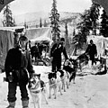 Alaskan Dog Sled, C1900 by Granger