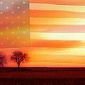 America The Beautiful by James BO  Insogna