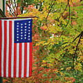 American Flag by Jill Lang
