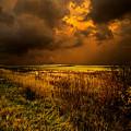 An Autumn Storm by Phil Koch