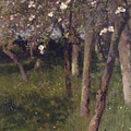 An Orchard by George Clausen