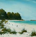 Anna Maria Beach by Charles Yates