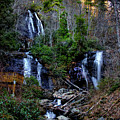 Anna Ruby Falls by Barbara Bowen