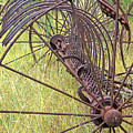 Antique Hay Rake by Jim Smith