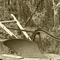 Antique One Share Plow by Robert Hamm