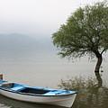 Apolyont Lake by Yesim Tetik