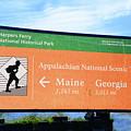 Appalachian National Scenic Trail by Raymond Salani III