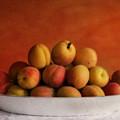 apricot delight by Priska Wettstein