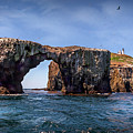 Arch Rock And Lighthouse by Endre Balogh
