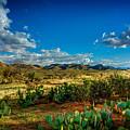 Arizona Sunrise 8 by Larry White