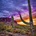 Arizona Sunset by Jon Berghoff