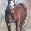 Arthur The Belgian Horse by Hans Droog