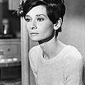 Audrey Hepburn (1929-1993) by Granger