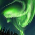 Aurora Borealis In Fairbanks Alaska by Brenda Jacobs