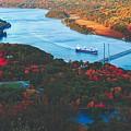 Autumn Along The Hudson by Unsplash