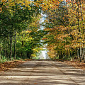 Autumn Backroad  by John McGraw