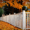 Autumn Fence by Idaho Scenic Images Linda Lantzy