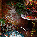 Autumn Garden by Ariadna De Raadt