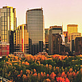 Autumn In Calgary by Pixabay