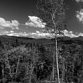 Autumn In The White Mountains by Skip Willits