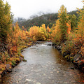 Autumn Is In The Air by Athena Mckinzie