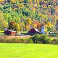 Autumn On The Farm by Felix Lai