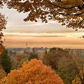 Autumn On The Hill by Joe Miller