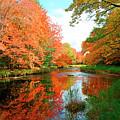 Autumn On The Mersey River, Kejimkujik National Park, Nova Scotia, Canada by Gary Corbett