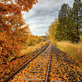 Autumn On The Tracks by David Patterson