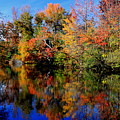 Autumn Pond by Gary Bydlo