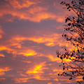 Autumn Sky by Konstantin Dikovsky