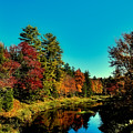 Autumn Splendor On The Moose River by David Patterson