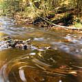 Autumn Swirl by Amanda Kiplinger