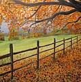 Autumn Vista Virginia by Sharon  De Vore