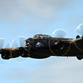 Avro Lancaster by Angel Ciesniarska