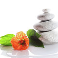 Balanced Stones And Red Flower by Gunay Mutlu