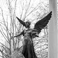 Ball State University Beneficence by University Icons