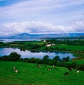 Bantry Bay, Co Cork, Ireland by The Irish Image Collection