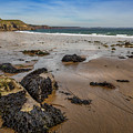 Barafundle Bay by Mark Llewellyn