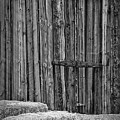Barn Doors And Hay by Susan Candelario