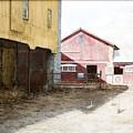 Barn Yard by Steven J White PWS