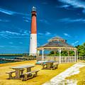 Barnegat Lighthouse Park by Nick Zelinsky
