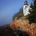 Bass Harbor Lighthouse, Acadia National Park by Kevin Shields