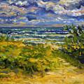 Beach At Delray by Ralph Papa