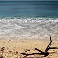 Beach At Grand Turk by Robert Smith