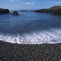 Beach At Point Lobos by Stan and Anne Foster
