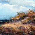 Beach Dune 2 by Peter R Davidson